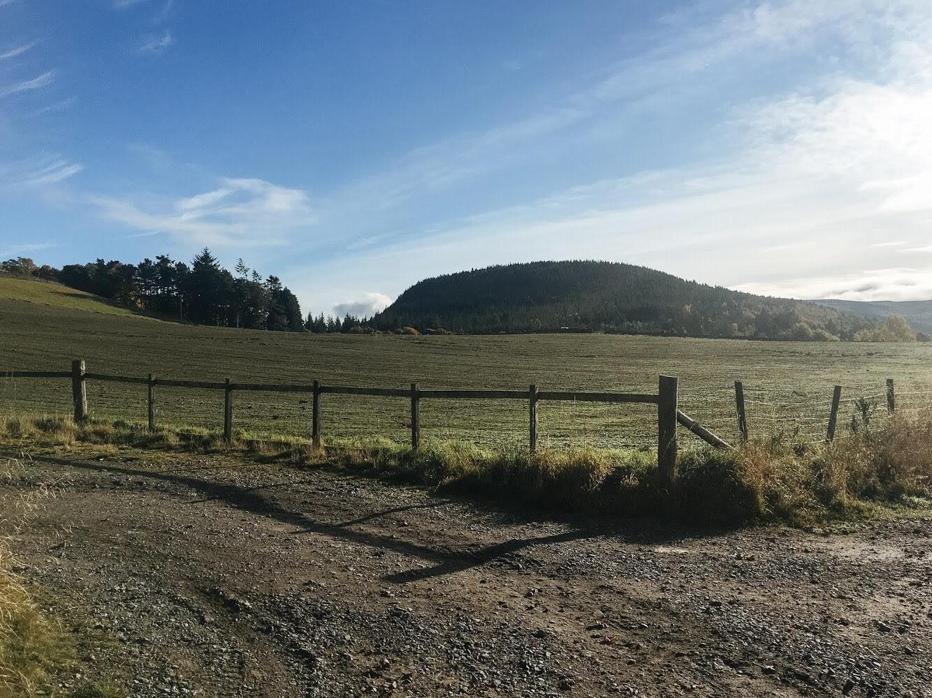 Showing Sgor Buidhe walk, Ballater, Cairngorms National Park