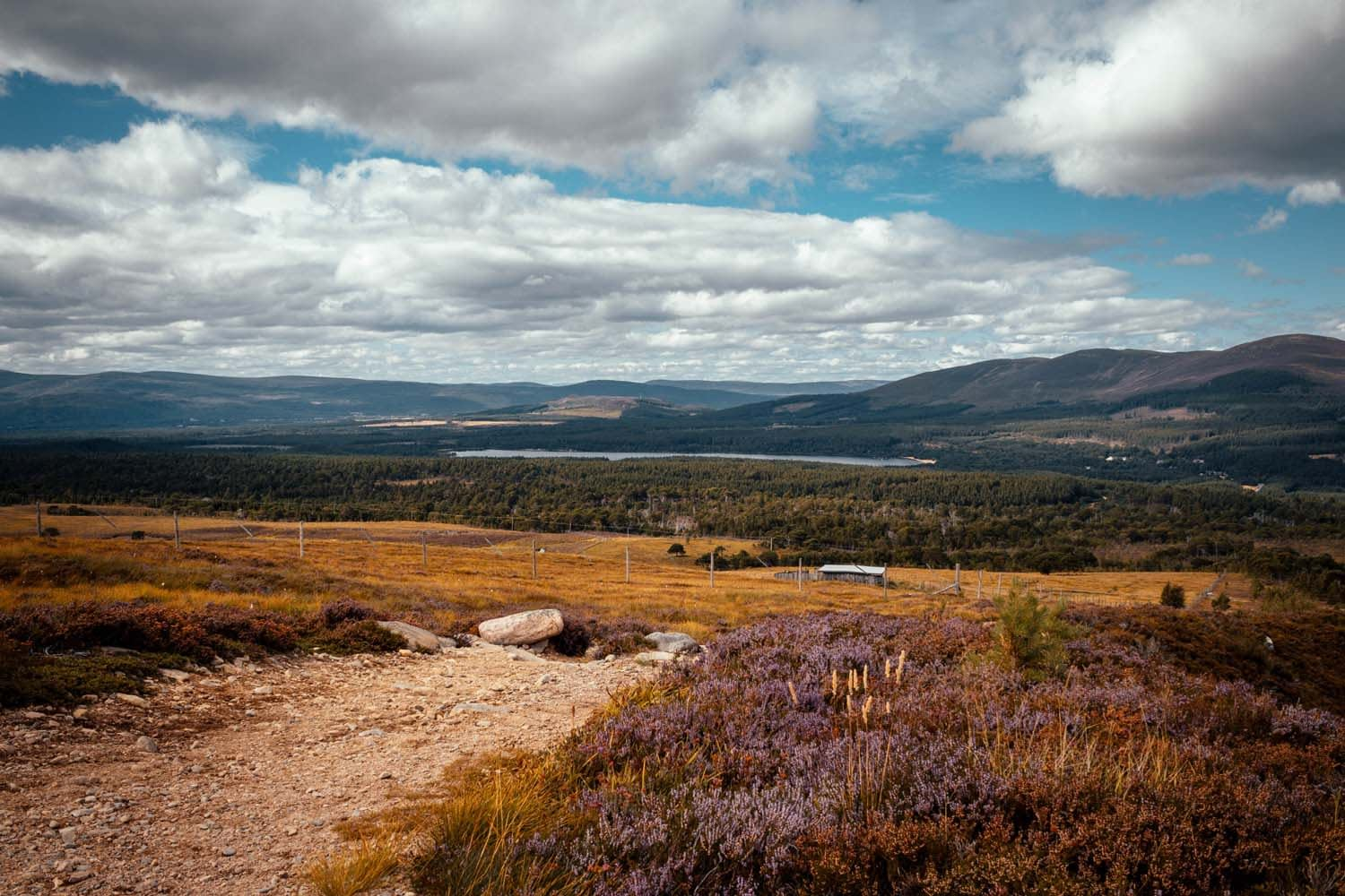Best Mountain Biking Routes in The Cairngorms