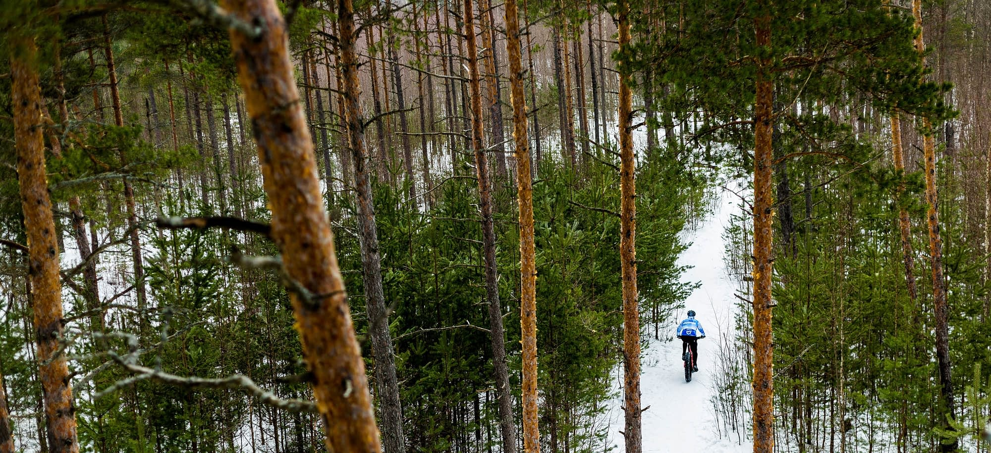 The Best Cycling Routes in the Cairngorms