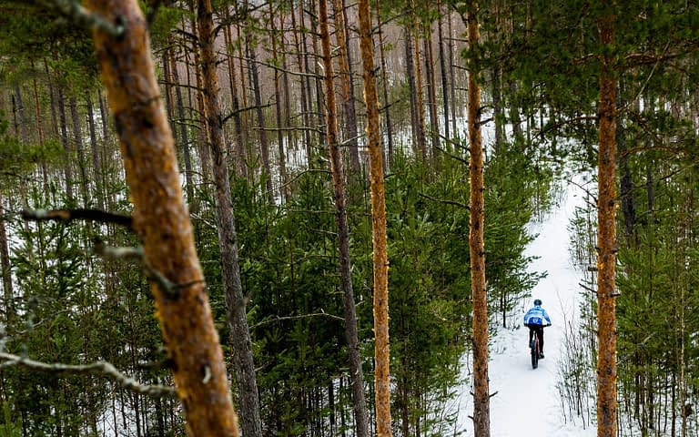The best cycling routes in the Cairngorms National Park